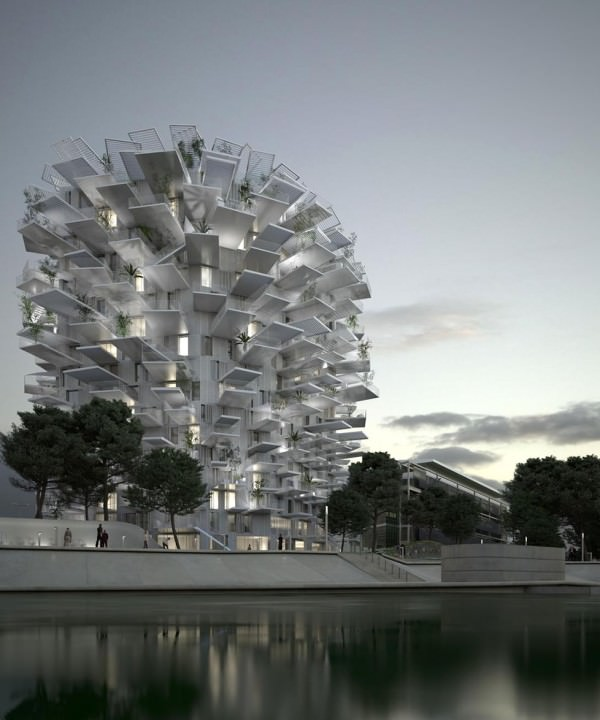 arbre-blanc-architecture-montpellier