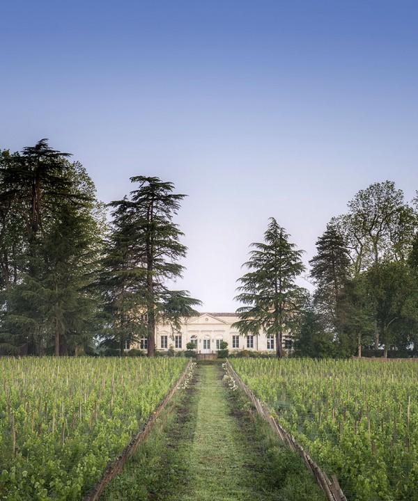 Chambre d'hôtes au Château le pape