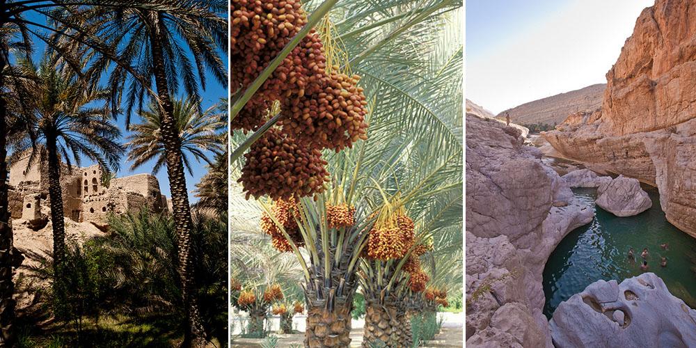Oman avec Asia