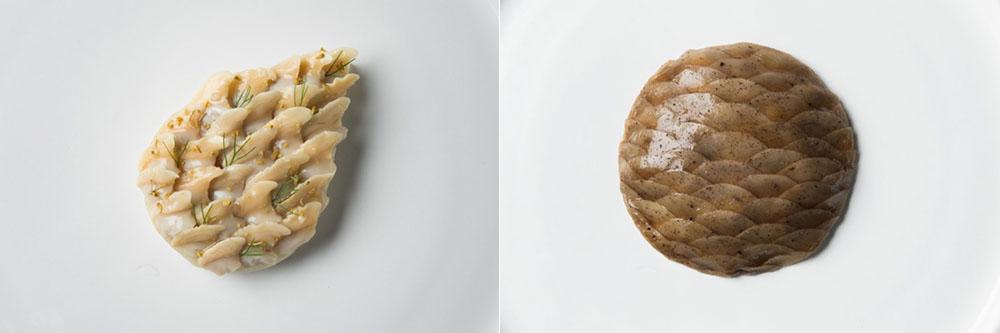 Gauche : Palourdes et fenouil / Droite : Champignons et Pignons de pin