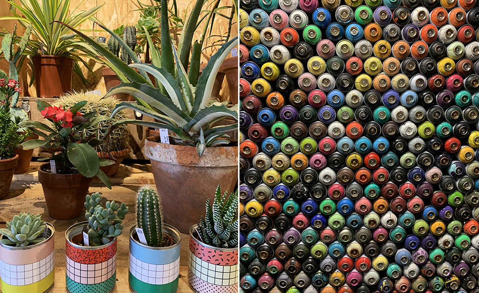 cactus-store-graffiti